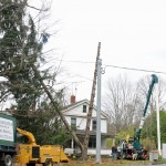 Workers clean up a split tree in front of a house on Prospect Street in Naugatuck Tuesday afternoon. –LUKE MARSHALL