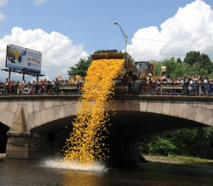 The Naugatuck Chamber of Commerce is seeking nonprofit organizations to sell tickets for the annual duck race. –FILE PHOTO