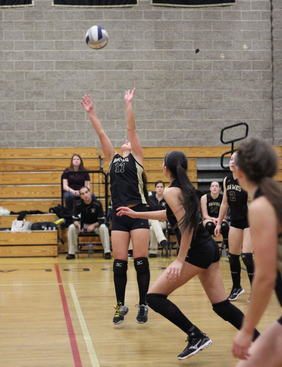 Hawks back in Class M volleyball final