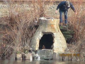 Sewage spilling into Naugatuck River