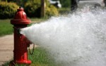 Water company to flush mains